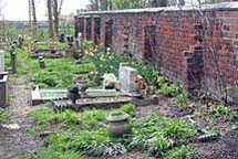 whilst other parts of the graveyard are slowly being cleared